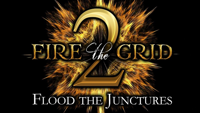 Global Meditation on January 13, 2021. More on Fire the Grid 2. Why? The Problem. The Plan.